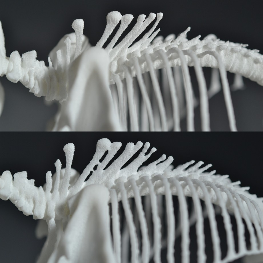 TOP: Sean BOTTOM: PS - Neck has lost detail and spine bones have fused together.
