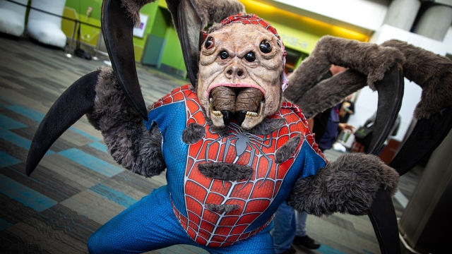 Incredible Man-Spider Cosplay at Silicon Valley Comic Con